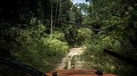 Jeep im urwald