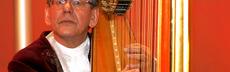 Feuerstein harfe