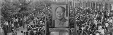 Mao akg