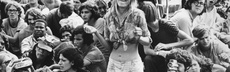 Woodstock akg